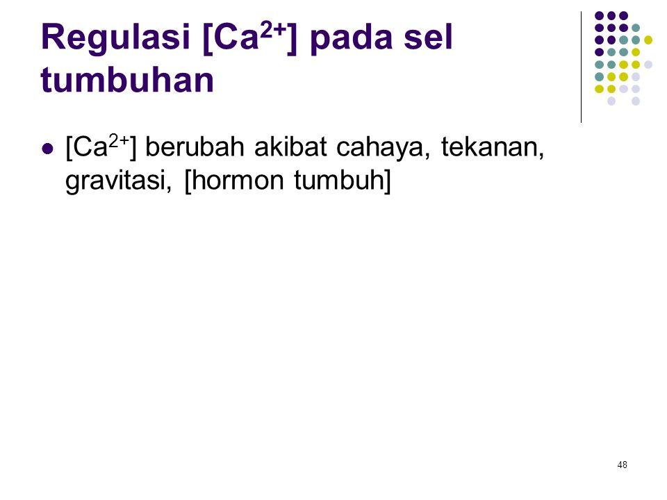 Regulasi [Ca2+] pada sel tumbuhan